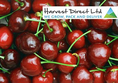 cherries---with-logo